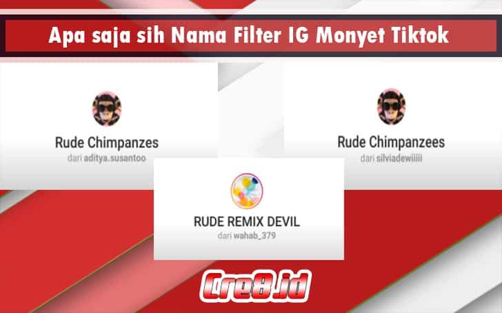 Apa saja sih Nama Filter IG Monyet Tiktok
